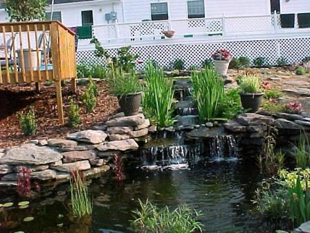 Gallery for gt backyard deck pond