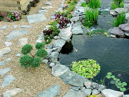 My pond the collapse and rebuild for Pond surround ideas