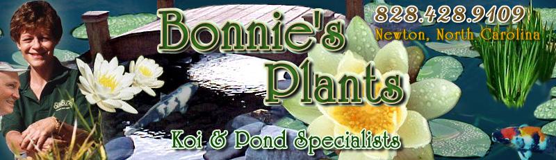 Home page of www.bonniesplants.com