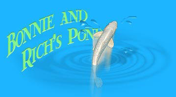 Welcome to Rich and Bonnie's Pond Video camera page